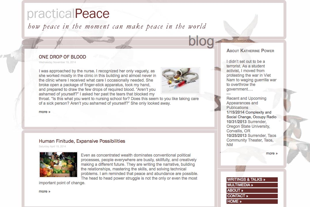 web design for an activist and blogger - Kathy Power