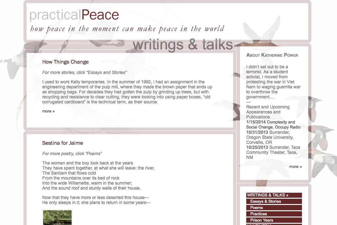 web design for an activist and blogger - writings and talks page