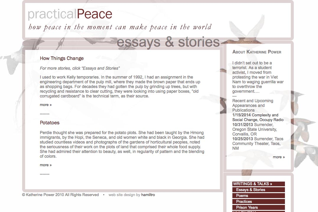 web design for an activist and blogger - essays and stories page
