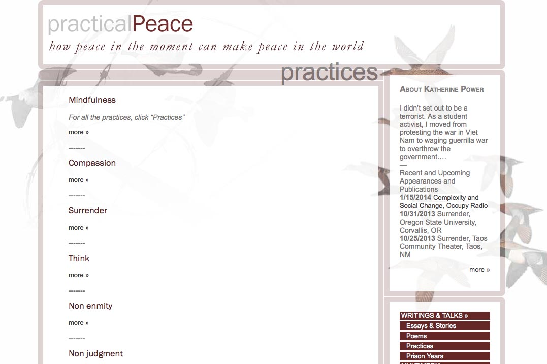 web design for an activist and blogger - practices page