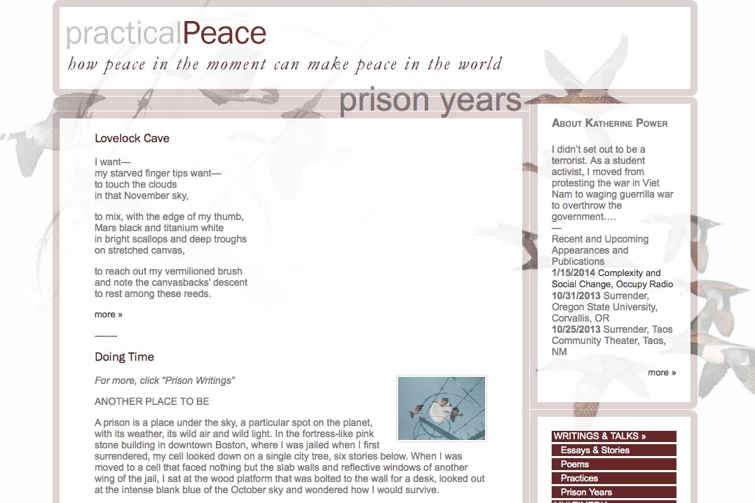 web design for an activist and blogger - prison page