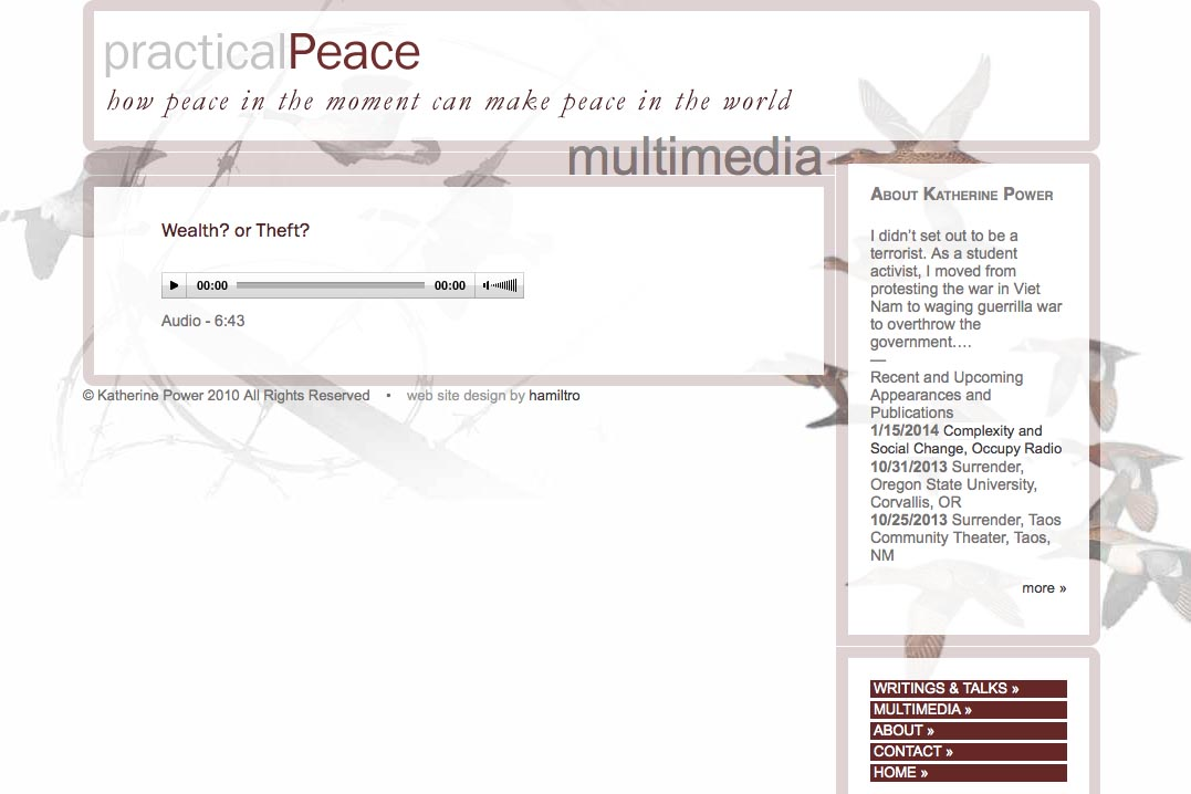 web design for an activist and blogger - multi-media page