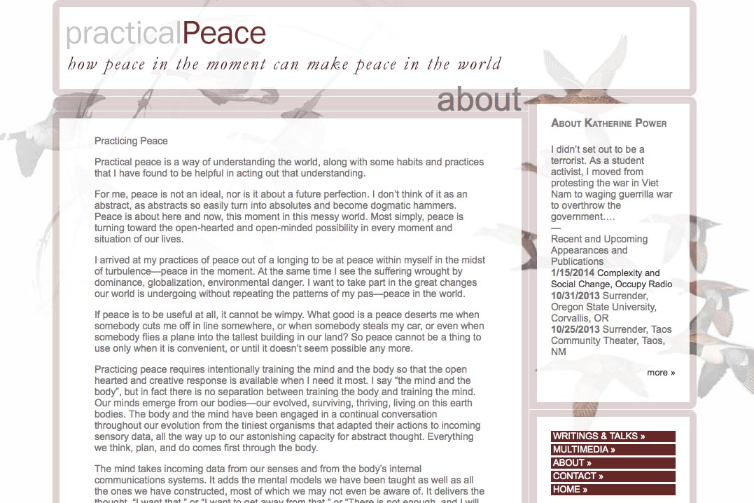 web design for an activist and blogger - about page