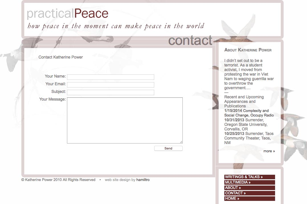 web design for an activist and blogger - contact page