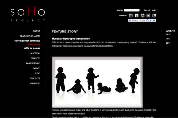 web design for a non-profit organization - soho project - featured story page