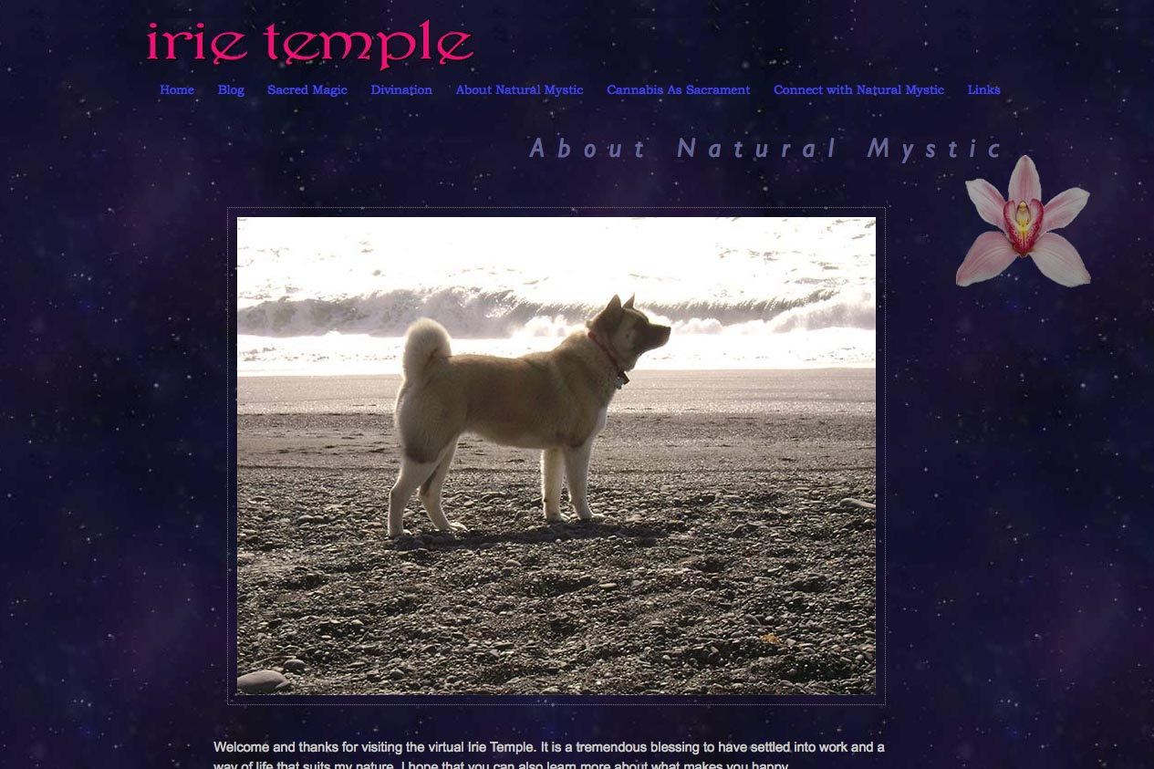 web design for a tarot reader and mystic - about page