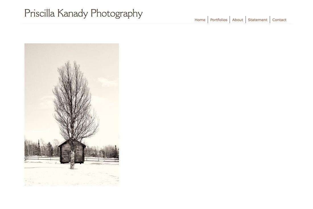 web design for a photographic artist