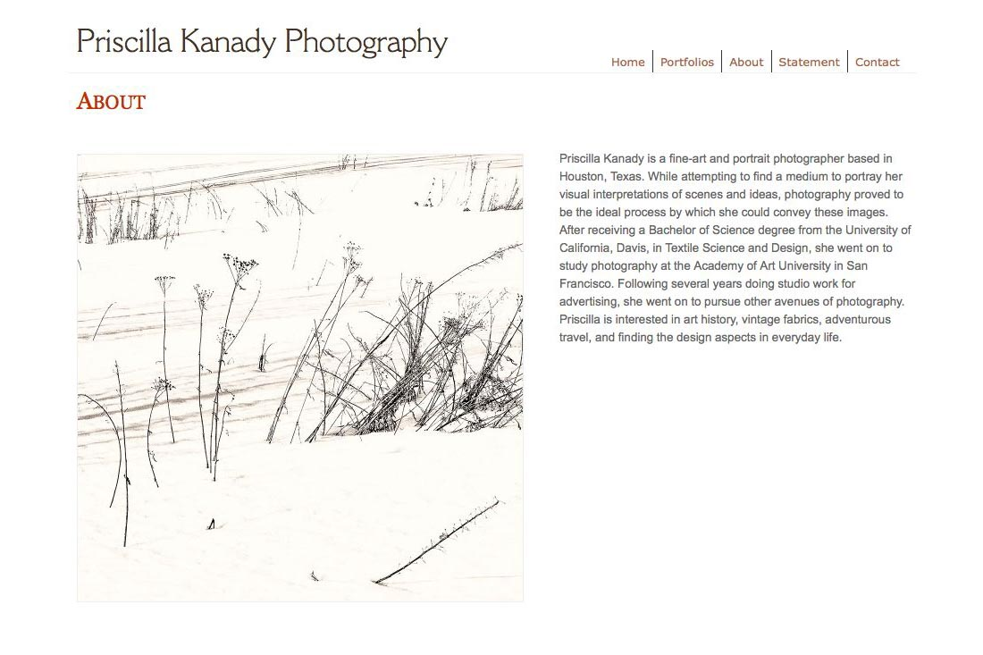 web design for a photographic artist - about page