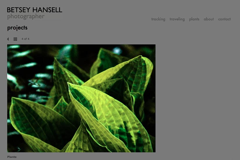 web design for a photographer - portfolio single page - projects
