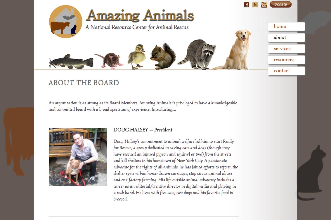 web design for a non-profit organization - Amazing Animals - about page