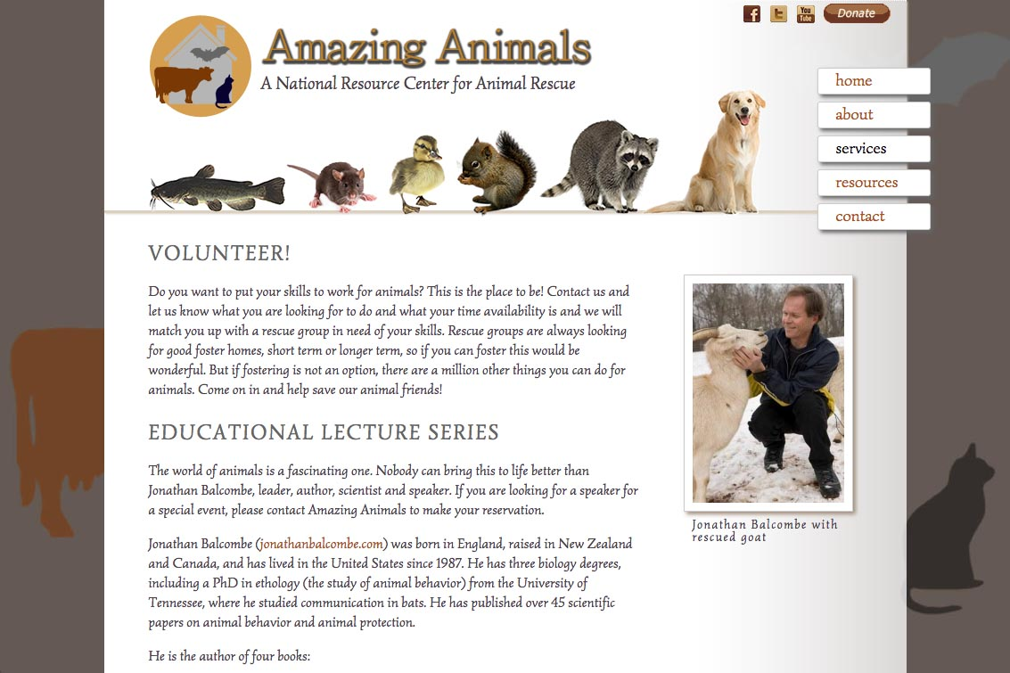 web design for a non-profit organization - Amazing Animals - services page