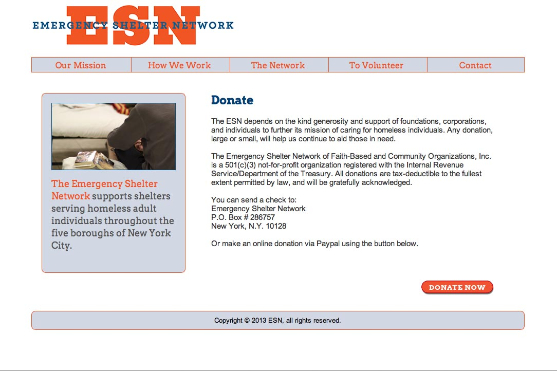 web design for a non-profit organization in new york - ESN - donations page