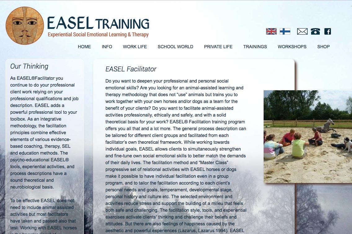 web design for a life coaching/therapy service - Easel Training  - training page