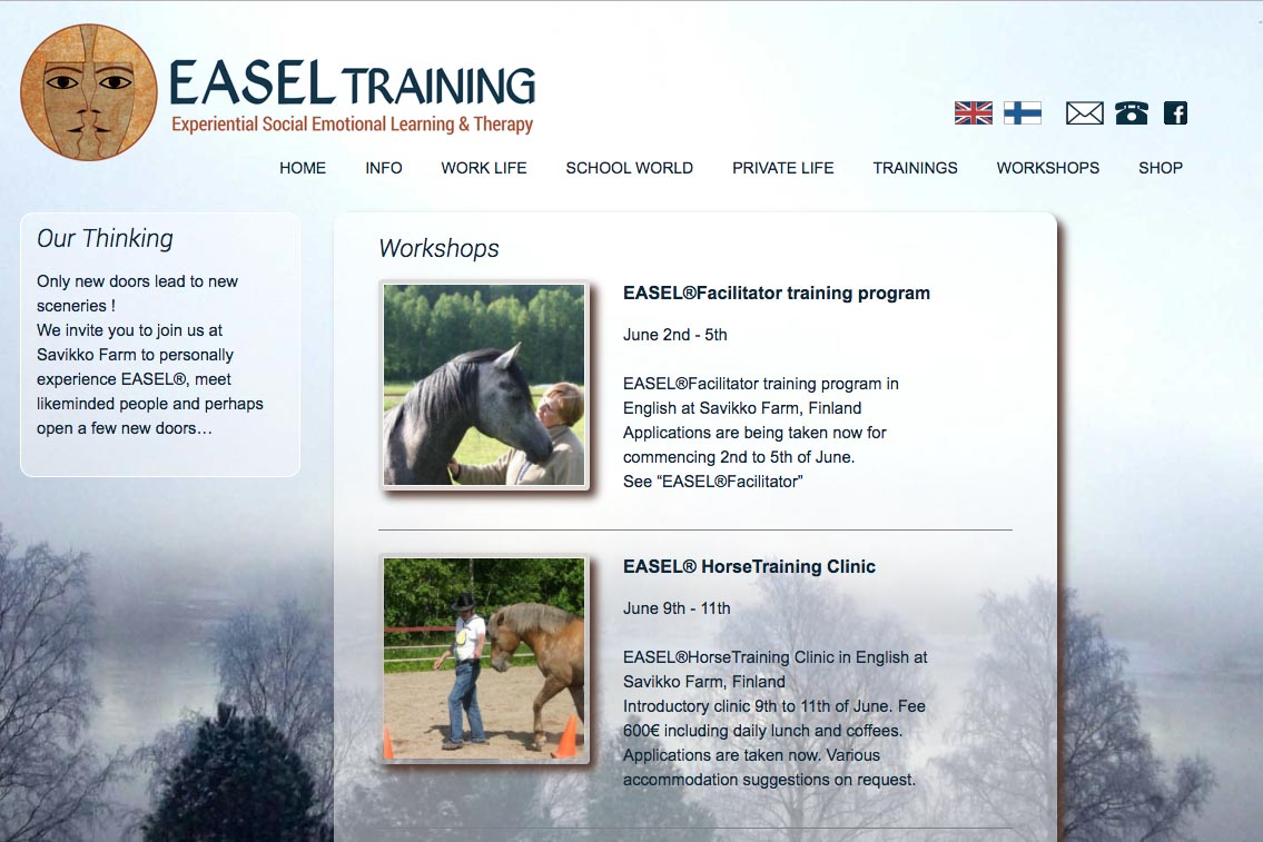 web design for a life coaching/therapy service - Easel Training  - workshops page