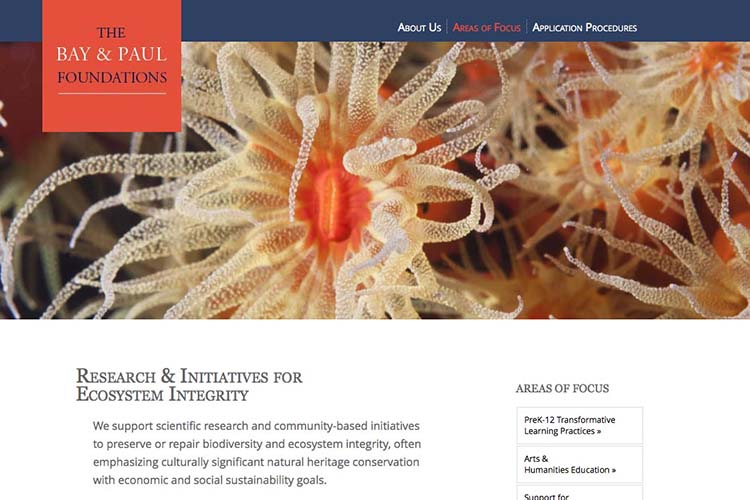 web design for a non-profit organization - areas of focus environment page