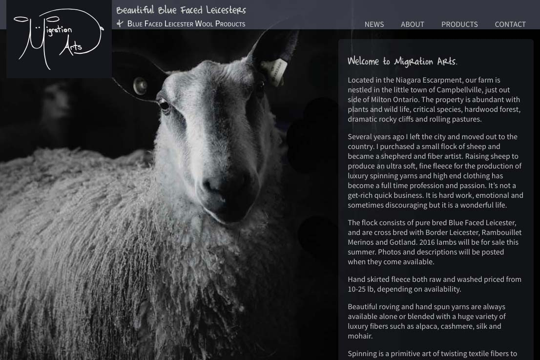 web design for a luxury wool products business in Canada - Migration Arts - home page a