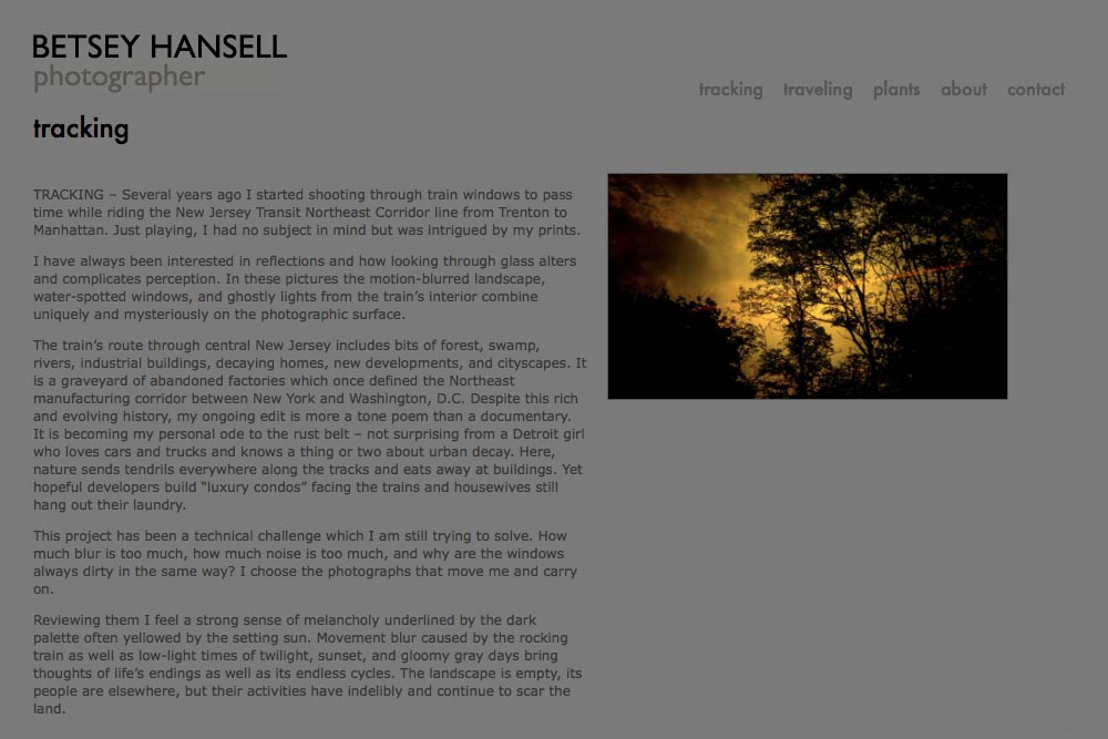web design for a photographer - Betsey Hansell - tracking portfolio statement page