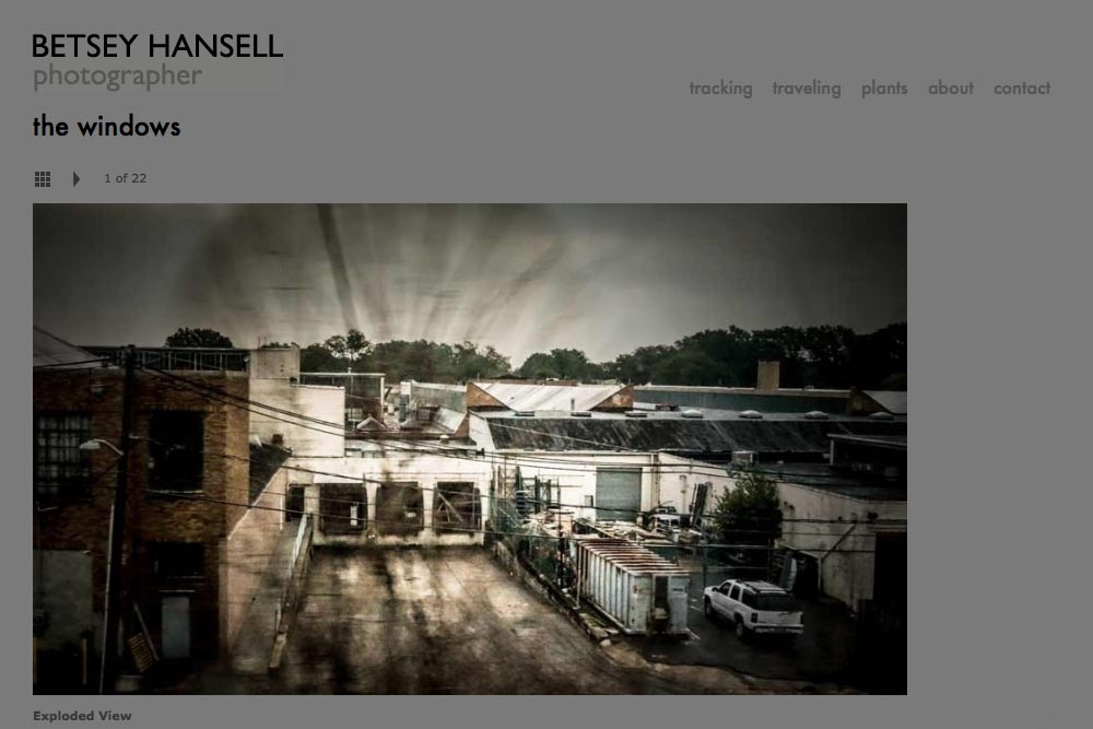 web design for a photographer - Betsey Hansell - single artwork from windows portfolio
