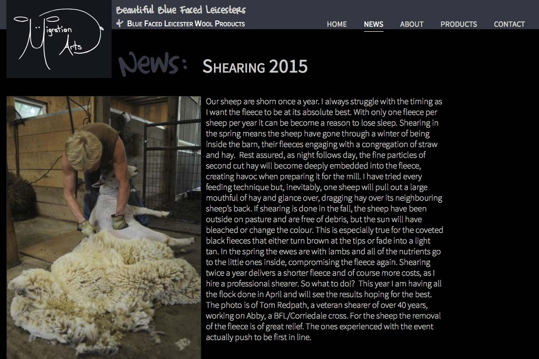 web design for a luxury wool products business - news single article page