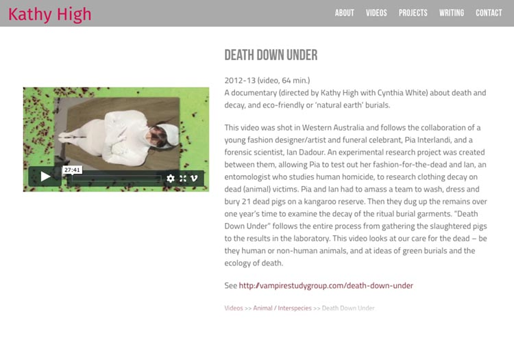 web design for a new media artist - video single page