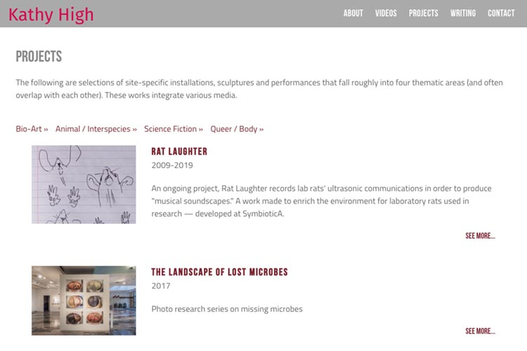 web design for a new media artist - projects index page