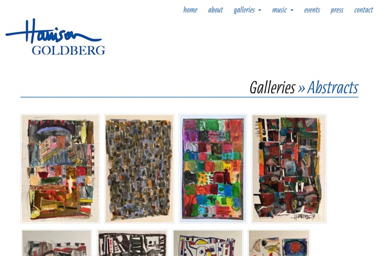 web design for artist & musician - galleries page