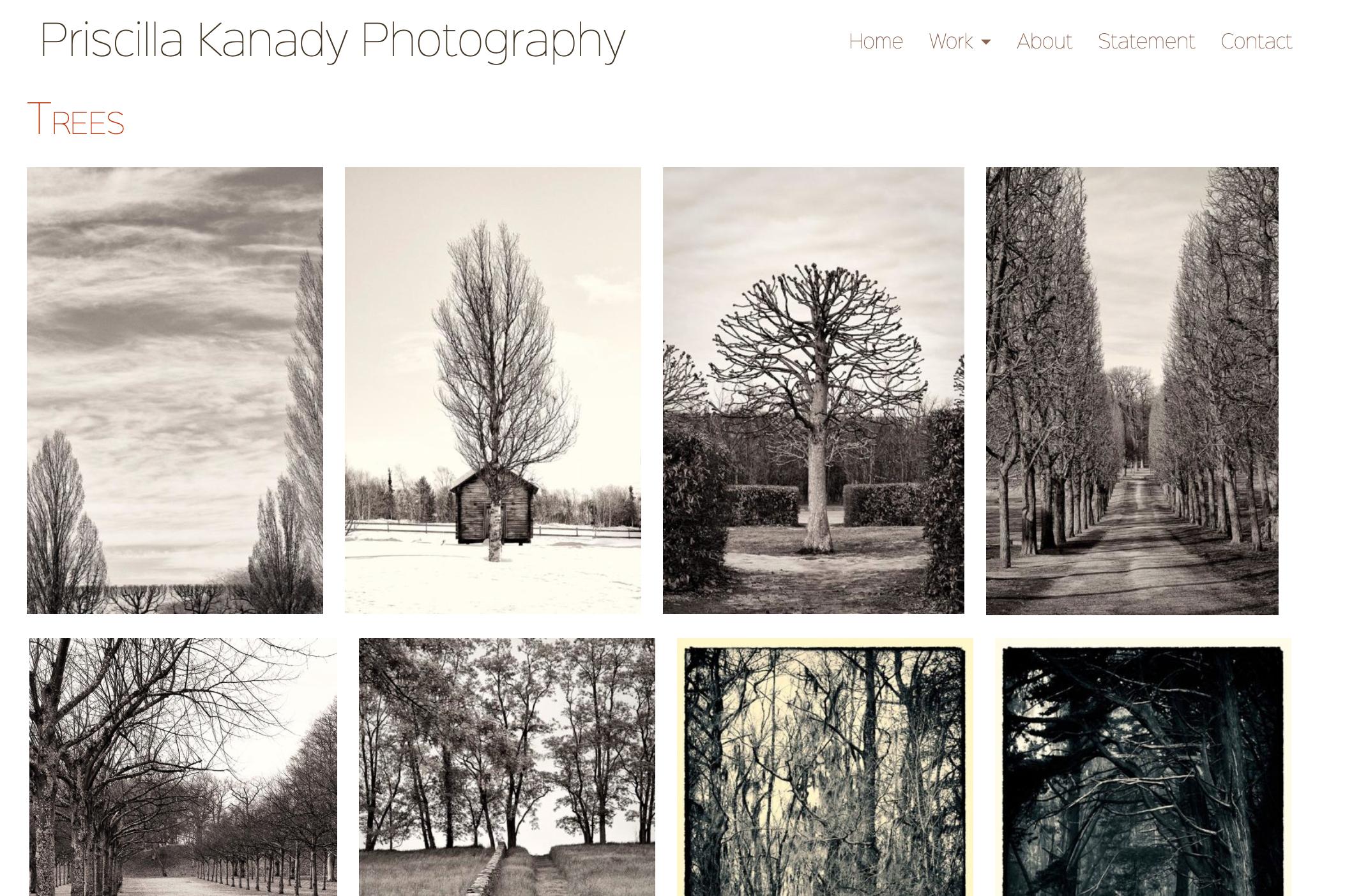 website design for a photographer