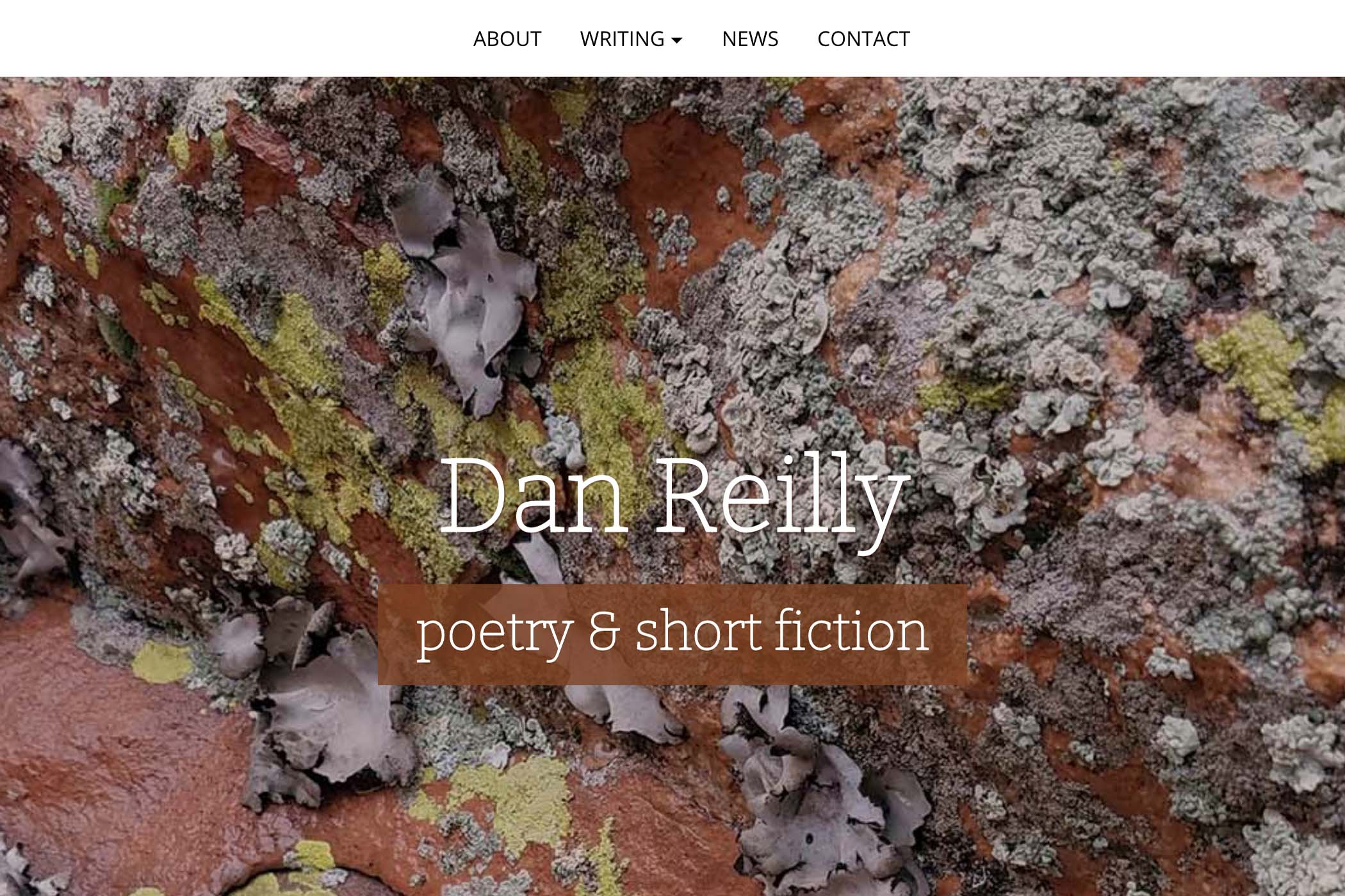 website design for a writer - homepage